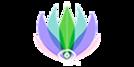 בניית אתר ל - Sa-Psychics  פורטל בינלאומי לשיחות עם מטפלים מכל העולם