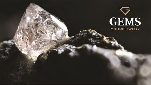 מיתוג עסקי לחברת ג'מס אונליין - GEMS Online