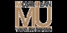 בניית אתר ל - Moshe Uzan